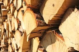 DřevoNavrátil - dub, polena 1 m